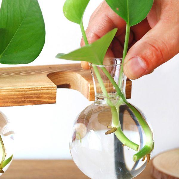 Creative-Glass-Bottle-Vase-Hydroponic-Plant-Transparent-Vase-Wooden-Frame-Coffee-Shop-Room-Decor-Table-Desk-4
